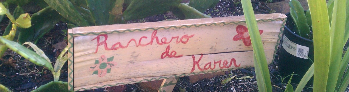 The Ranchero in August, 2011
