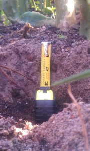 "6"" hole with 3"" amended soil"