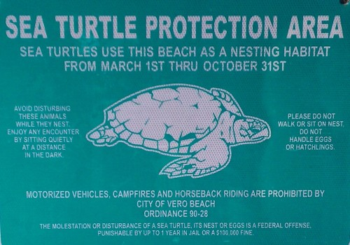 sea turtle protection sign