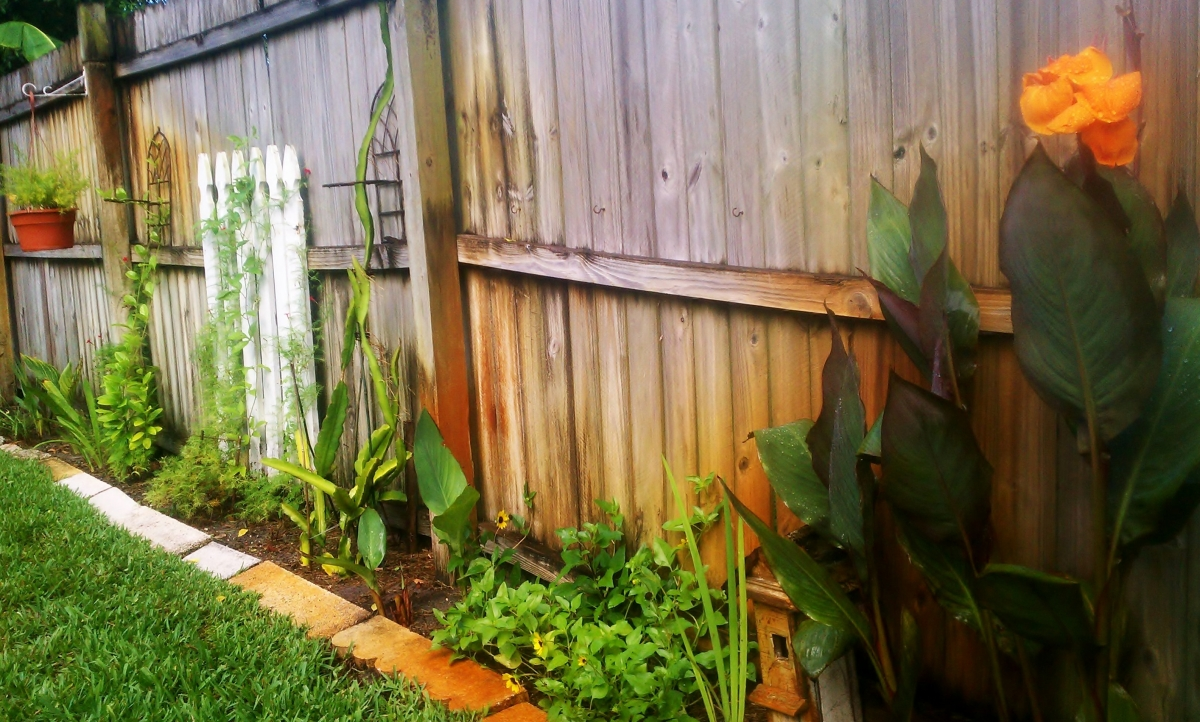 Vine Garden along the Perimeter
