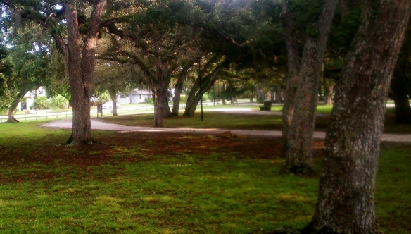 Under the oaks at Riverside Park, Vero Beach, 9/6/12