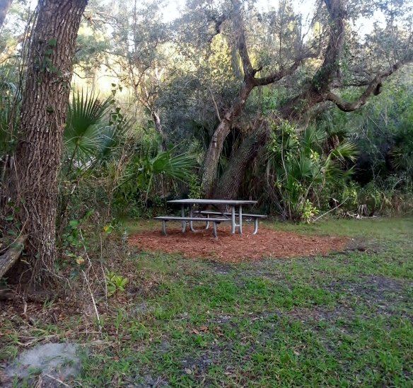 Lagoon Greenway Picnic Area 1, January 2013