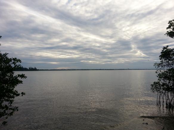 Indian River Lagoon, January 2013