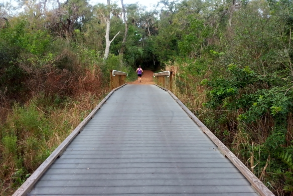 Elevated Boardwalk, Lagoon Greenway, January 2013
