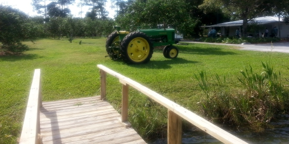 Countryside Citrus tractor, Vero Beach 11/8/13