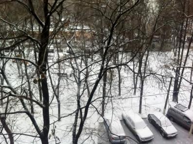 Snowy Day!